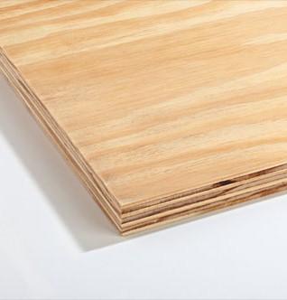 12mm Shuttering Ply (2440 x 1220mm)